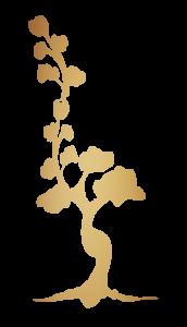 CFHP_tree-01